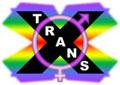 TransX Logo